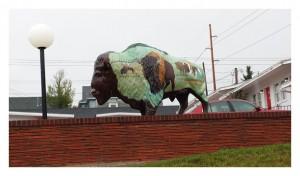 sdartbuffalo2
