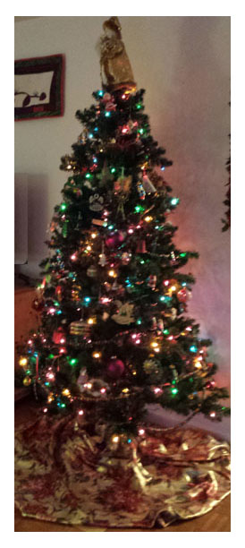This year's christmas tree